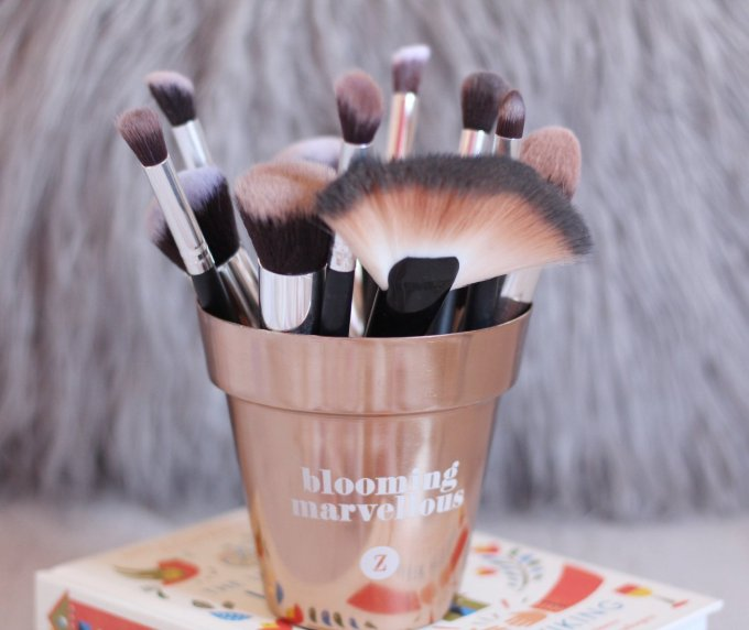 12 Piece Brush Set by Cabella.jpg